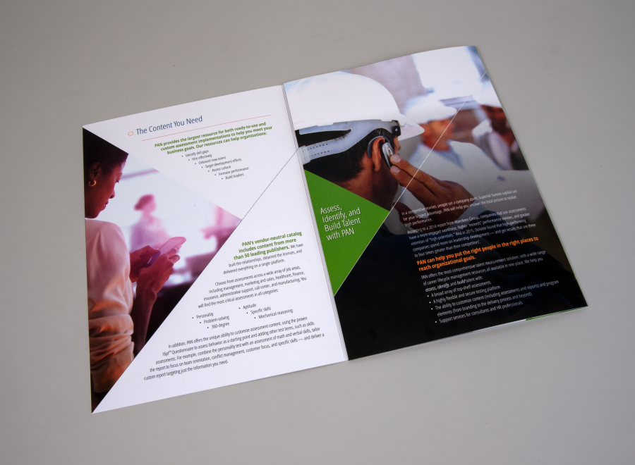 PAN Tri-Fold Brochure, Image 3