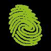 Branding Identity and Logo Design